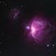 Orion Bicolor,                                Jirair Afarian