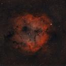 IC1396 Emission Nebula in Cepheus,                                Zhu Chunguang