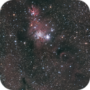 Christmas Tree Cluster and Cone Nebula,                                Anne-Maree McComb