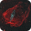 "Sh2-129 ""Flying Bat"" and Outters 4 ""Giant Squid"" Nebulae,                                herwig_p"