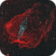"""Sh2-129 """"Flying Bat"""" and Outters 4 """"Giant Squid"""" Nebulae,                                herwig_p"""