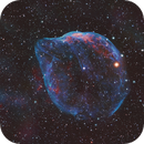 A Cosmic Bubble - Sh2-308,                                Andy 01