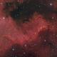 The Cygnus Wall - NGC 7000,                                Alessandro Carrozzi