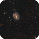 NGC 7479 - The Superman Galaxy and some IFN,                                Bart Delsaert