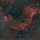Cygnus Wall,                                Dren