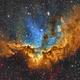 Wizard Nebula,                                Dan Wilson