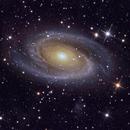 M81, Bode's Galaxy,                                PJ Mahany