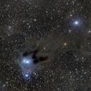 vDB 31 Reflection Nebula in Auriga,                                JohnAdastra