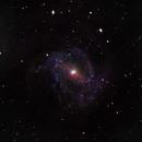 M83 Southern Pinwheel Galaxy,                                Stephen Charnock