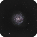 NGC 3184,                                Hap Griffin