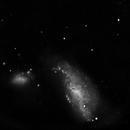 NGC 4490,                                Günther Eder
