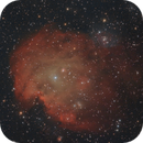 NGC 2174 - Monkeyhead Nebula,                                nazarine