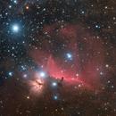 Dark dust in Orion,                                Dominik Sito