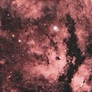 Sadr Region Nebula,                                Jammie Thouin