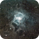 NGC7023,                                Rusty