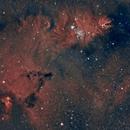 Cone Nebula,                                Dasidius