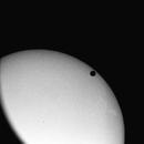 Venus Transit,                                Bob Traube