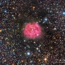 The Cocoon Nebula,                                Scott