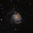 M101,                                Giorgio Baj