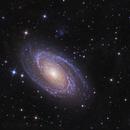 M81,                                Marko Järveläinen
