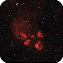 NGC6334 - Cat's Paw Nebula,                                Marcelo Alves