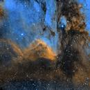 Pelican Nebula SHO,                                Will Czaja