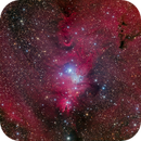 NGC 2264 (Cone) - Deep Sky West Remote Observatory,                                Deep Sky West (Lloyd)