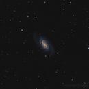 NGC2903,                                Florian APPERT