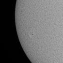 Sun in Halpha - July 23, 2020 - AR2767,                                JDJ