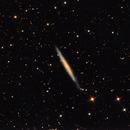 NGC 4244,                                PJ Mahany