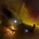 Horsehead Nebula in Narrowband (HSO),                                Ryan
