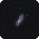 M106,                                Marco Colombi