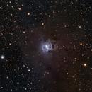 NGC 7023 - The Iris Nebula in LRGB (2021 Edition),                                Eshan Toorabally