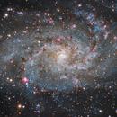 M33 - close up,                                Almos Balasi