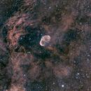 Crescent Nebula - Collaboration,                                Jared Holloway