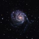 M101,                                barrabclaw