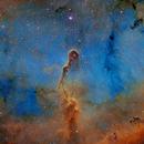 The Elephant Trunk Hubble Palette,                                Eric Coles (coles44)