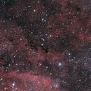 IC1318, Barnard 344 and more - Emmission Nebula at Gamma Cygni,                                Michael Hoppe