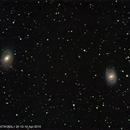 M95 + M96,                                Wulf