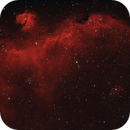 Sh2-292 - IC2177 - Seagull Nebula in HαRGB,                                Uwe Deutermann