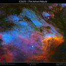 IC5070 - The Pelican Nebula SHO with RGB Stars,                                Brice Blanc