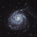 M101 Galassia Girandola,                                Alberto Mercurio