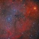 Elephant Trunk IC 1396 in LRGBHa,                                Stefan-Harry-Thrun
