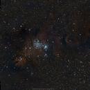 NGC 2264 Cone Nebula & Christmas Tree Cluster,                                brad_burgess