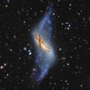 NGC 660,                                DetlefHartmann