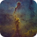 IC 1396 Elephant trunk Nebula,                                Asgartt