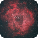 Rosette Nebula,                                irwindvm@yahoo.com