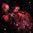 NGC 6334 - NEBULOSA PATA DO GATO,                                Irineu Felippe de Abreu Filho
