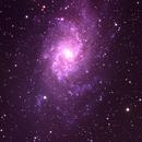 M033 Triangulum Galaxy,                                Frank Headley