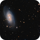 NGC 2903,                                Lorenzo Siciliano